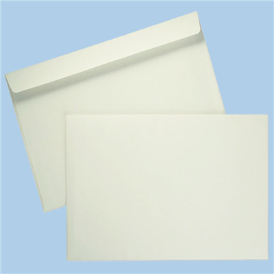 9x12 Booklet Envelopes